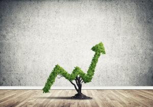 Perspektywy inwestycyjne