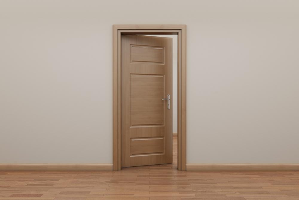 Drzwi wewn trzne jak wybra ich kolor i materia for Porte interieur tendance