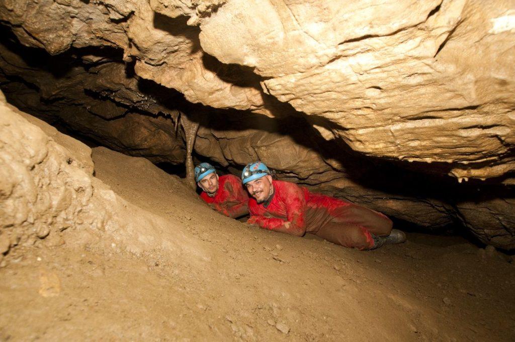 W 2012 r. w Jaskini Niedźwiedziej w Kletnie speleolodzy z Sekcji Grotołazów Wrocław oraz Sekcji Speleologicznej Niedźwiedzie z Kletna, odkryli nieznane dotąd korytarze i sale, w tym ogromną Salę Mastodonta.