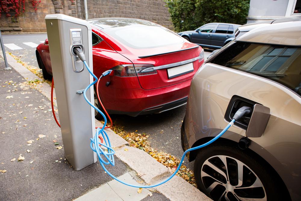 rynek aut elektrycznych